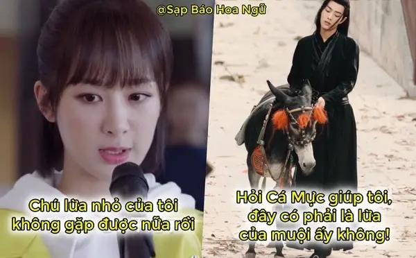 Dương Tử và mỹ nam Trần Tình Lệnh kết đôi trong phim mới-3