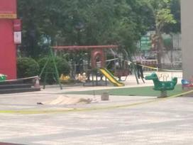 Người rơi từ tầng 27 chung cư Vinaconex là Phó giám đốc Sở NN-PTNT Hà Nội
