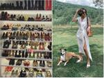 Choáng ngợp với tủ giày hàng trăm đôi cực kỳ 'xịn xò' của Văn Mai Hương