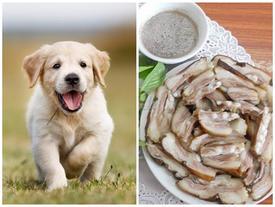 Cặp đôi cãi vã chỉ vì cô bạn gái ăn thịt chó: 'Người ăn thịt chó là người cổ hủ, dân trí thấp...'?