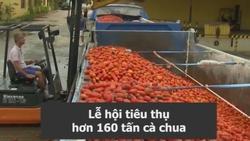 Trải nghiệm lễ hội ném cà chua lớn nhất tại Tây Ban Nha