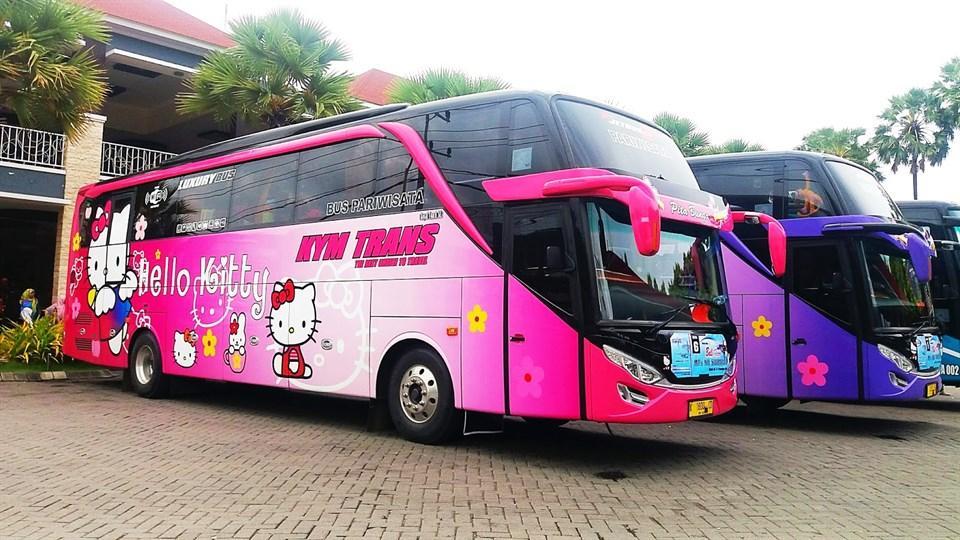 Thực hư việc xuất hiện xe đi Đà Lạt phiên bản HELLO KITTY toàn màu hồng làm tín đồ du lịch đứng ngồi không yên-6