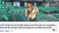 Mặc kệ những lời chỉ trích, NSX phim 'Cậu Vàng' cương quyết không loại chú chó Nhật thuần chủng