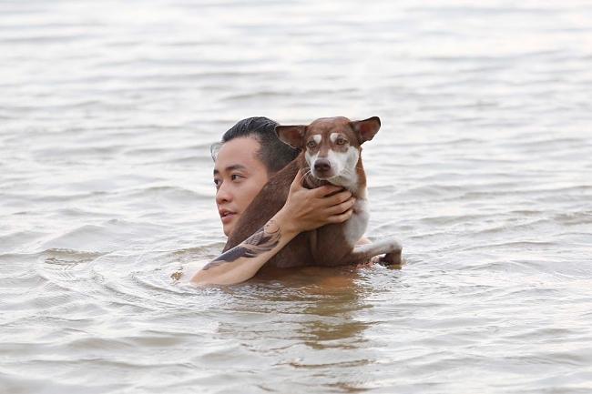 VZN News: 3 chú chó ta ấn tượng trên màn ảnh Việt, diễn xuất không kém cạnh chó ngoại-10