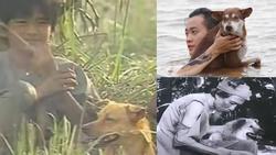 3 chú chó ta ấn tượng trên màn ảnh Việt, diễn xuất không kém cạnh chó ngoại