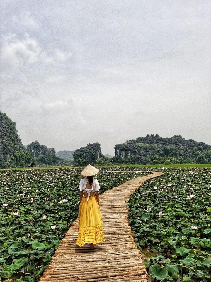 Xuất hiện đầm sen đẹp lạ lùng ở Ninh Bình làm giới trẻ mê mẩn muốn đến check in-1