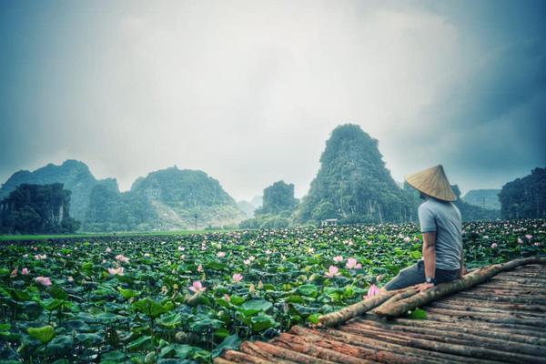Xuất hiện đầm sen đẹp lạ lùng ở Ninh Bình làm giới trẻ mê mẩn muốn đến check in-8