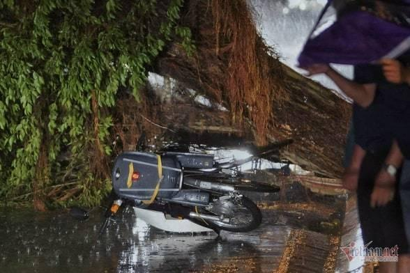 Giông lốc đánh úp, cây đổ la liệt giữa phố Hà Nội, một thanh niên tử vong-2