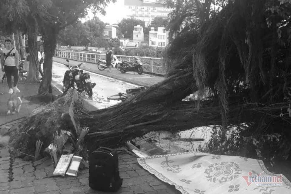 Giông lốc đánh úp, cây đổ la liệt giữa phố Hà Nội, một thanh niên tử vong-3