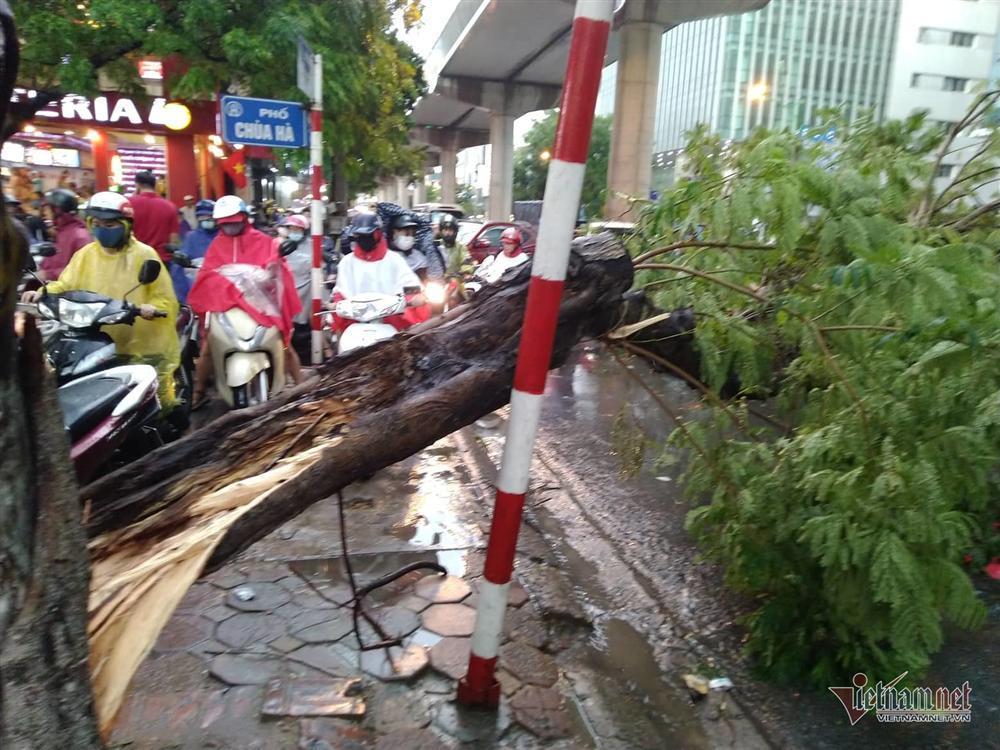 Giông lốc đánh úp, cây đổ la liệt giữa phố Hà Nội, một thanh niên tử vong-4