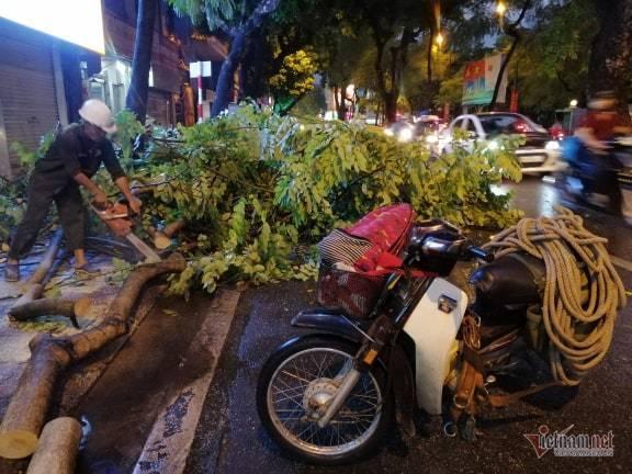 Giông lốc đánh úp, cây đổ la liệt giữa phố Hà Nội, một thanh niên tử vong-8
