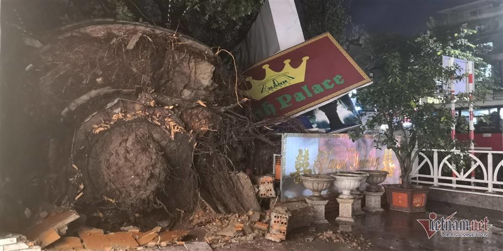Giông lốc đánh úp, cây đổ la liệt giữa phố Hà Nội, một thanh niên tử vong-12