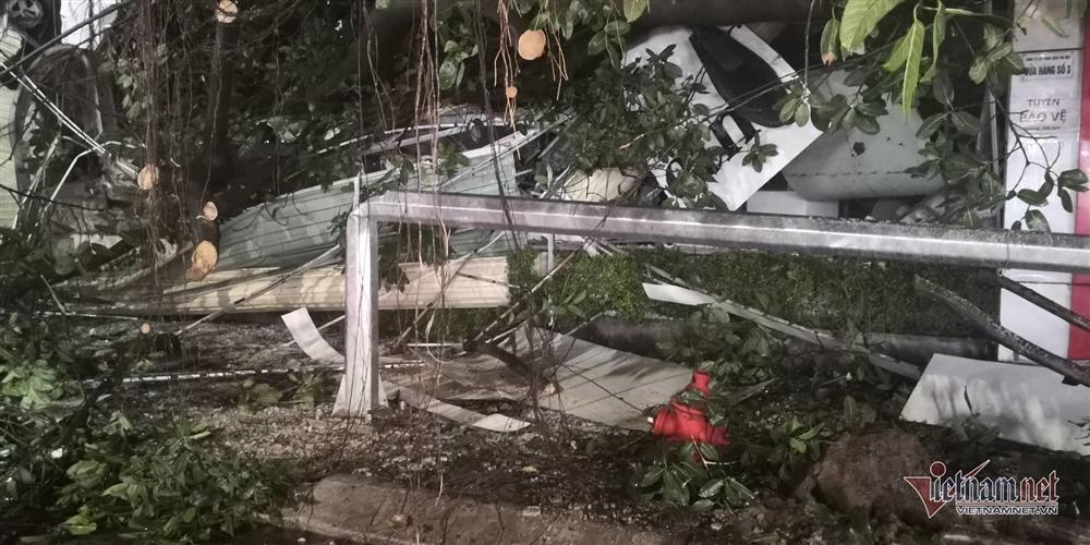 Giông lốc đánh úp, cây đổ la liệt giữa phố Hà Nội, một thanh niên tử vong-13
