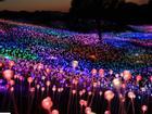 Lễ hội ánh sáng giữa cánh đồng rộng 100.000 m2 ở đảo Jeju