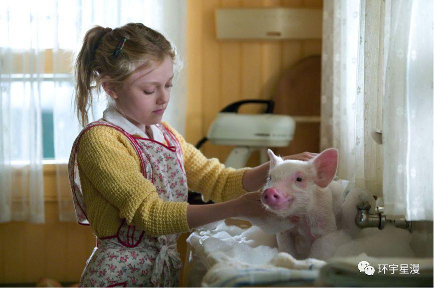 VZN News: Những phim cảm động về con người và thú cưng-1
