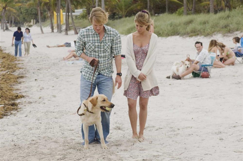 VZN News: Những phim cảm động về con người và thú cưng-2