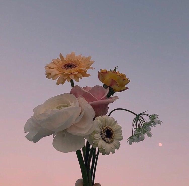 Tử vi thứ Tư ngày 11/9/2019 của 12 con giáp: Sửu mâu thuẫn yêu đương, Thìn không nên liều lĩnh-2