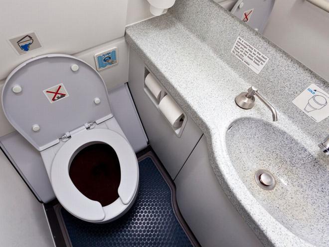 Quan hệ tình dục trong nhà vệ sinh và những trò lố trên máy bay-7