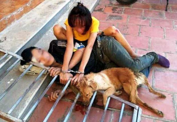Triệu tập 30 nghi phạm trong đường dây trộm chó, tiêu thụ hơn 100 tấn-2
