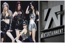 BlackPink 'cày tour' bục mặt vẫn không cứu nổi YG thoát cảnh khủng hoảng kinh tế thậm chí vỡ nợ