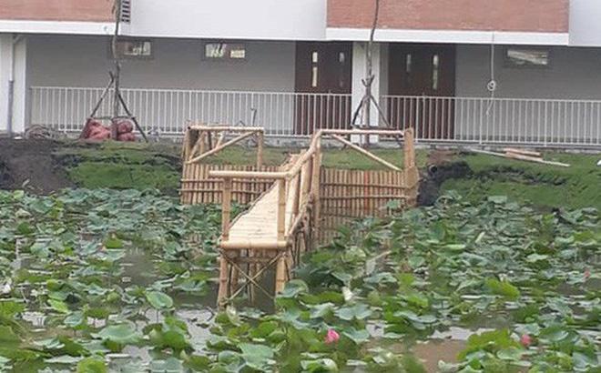 Trường đại học dựng cầu tre bắc ra hồ sen cho sinh viên sống ảo nhận về bão like từ cư dân mạng-1