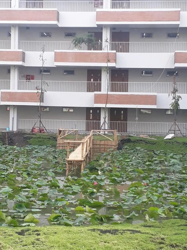 Trường đại học dựng cầu tre bắc ra hồ sen cho sinh viên sống ảo nhận về bão like từ cư dân mạng-2