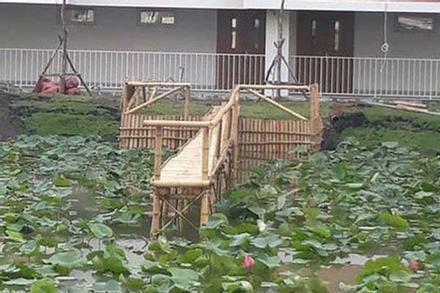 Trường đại học dựng cầu tre bắc ra hồ sen cho sinh viên sống ảo nhận về 'bão like' từ cư dân mạng