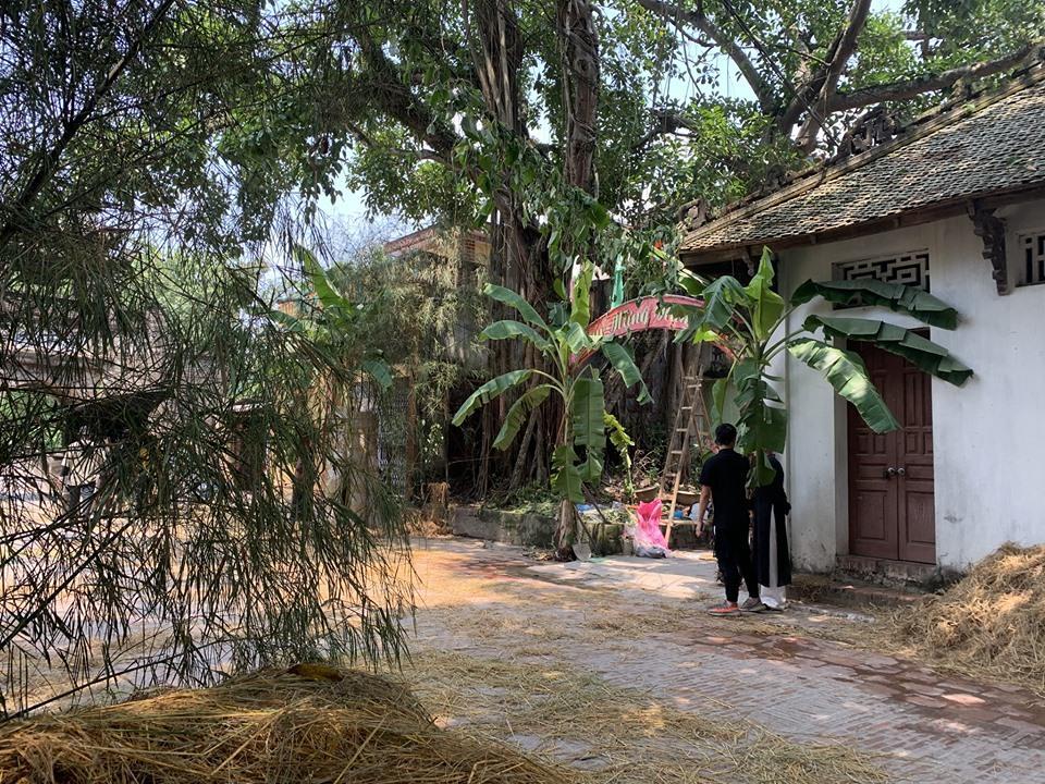 Lộ ảnh Đức Phúc hóa ông giáo đứng cạnh cây chuối trong MV mới-3