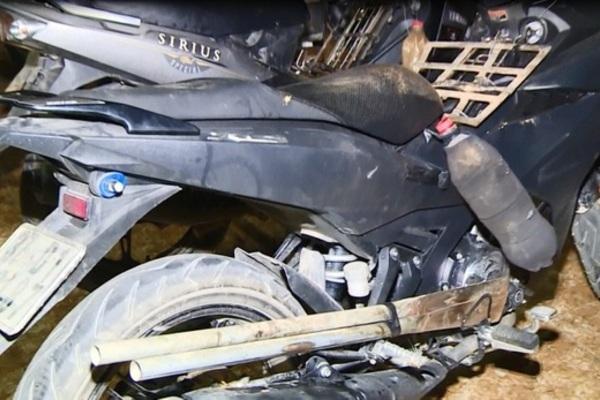 VZN News: Chiếc hầm bí mật trong đường dây trộm hơn 100 tấn chó ở Thanh Hóa-2