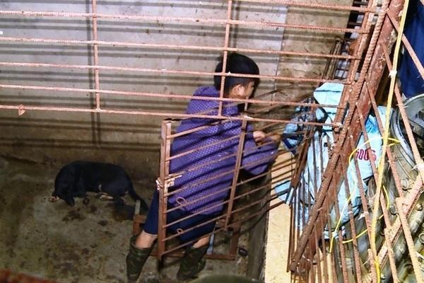 VZN News: Chiếc hầm bí mật trong đường dây trộm hơn 100 tấn chó ở Thanh Hóa-3