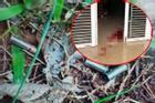 Vụ em ruột bắn vợ chồng anh trai ở Bình Phước: Lại vì mâu thuẫn đất đai?