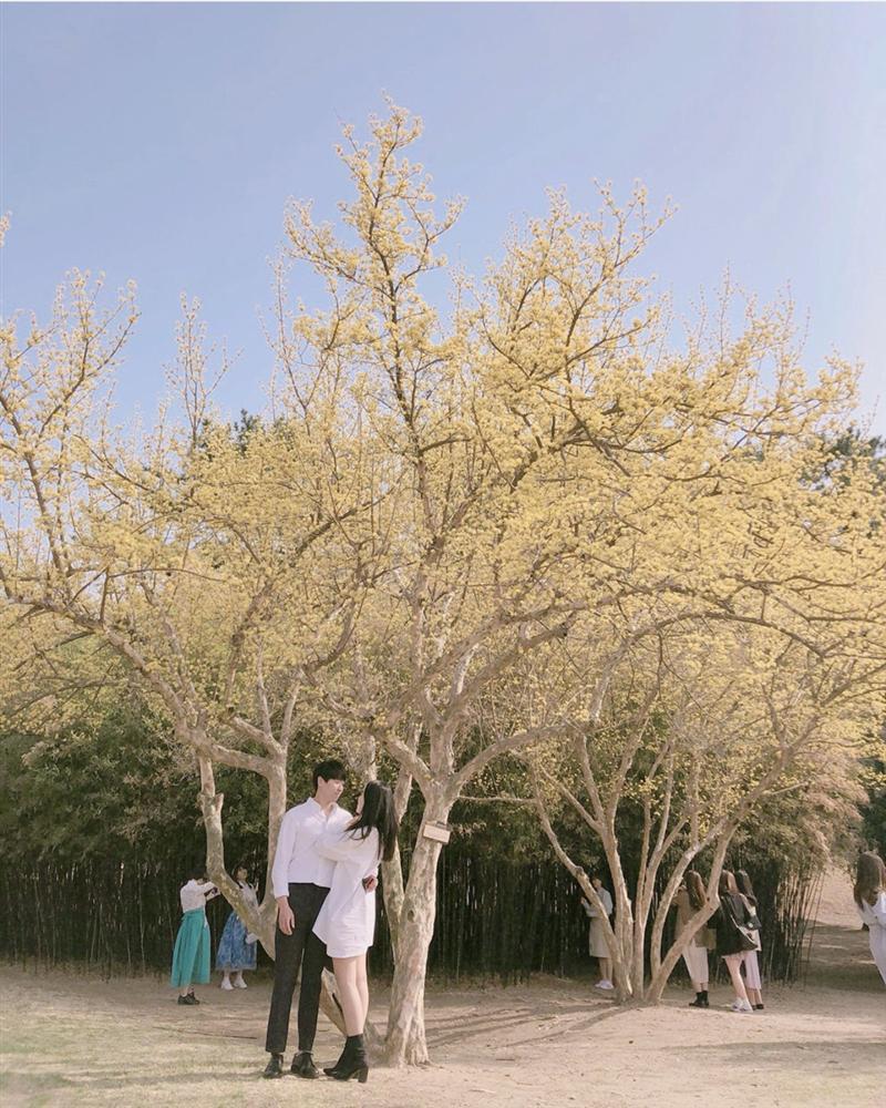 Check-in 3 địa điểm đẹp như phim trong mùa thu Hàn Quốc-1