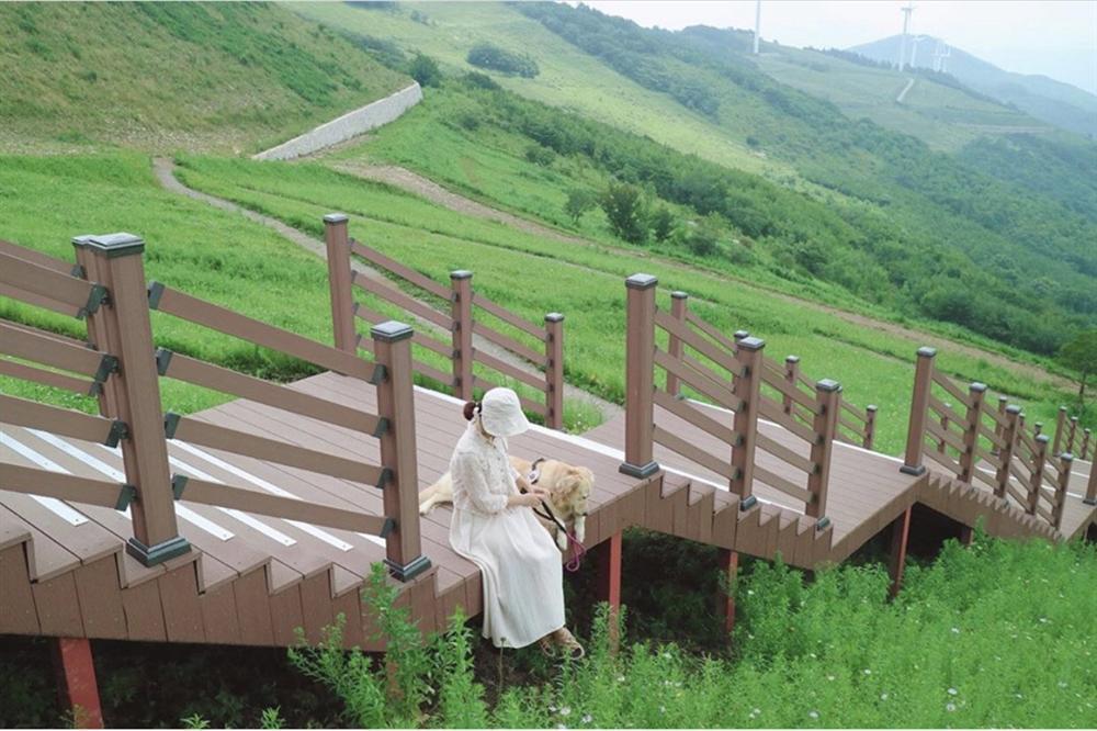 Check-in 3 địa điểm đẹp như phim trong mùa thu Hàn Quốc-5
