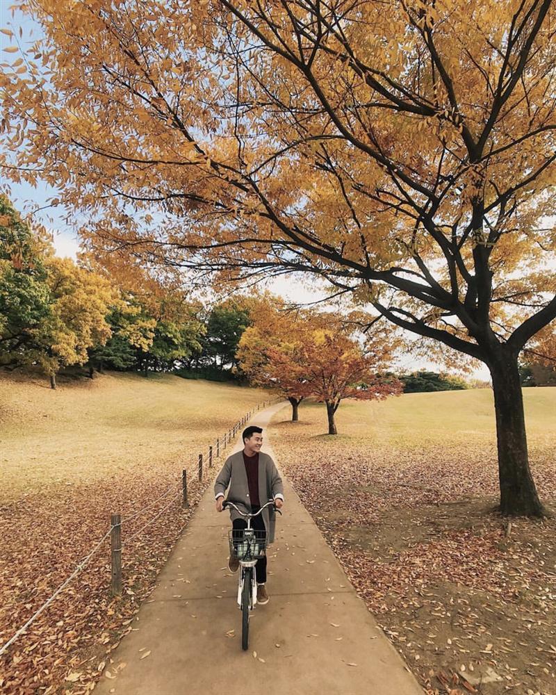 Check-in 3 địa điểm đẹp như phim trong mùa thu Hàn Quốc-6