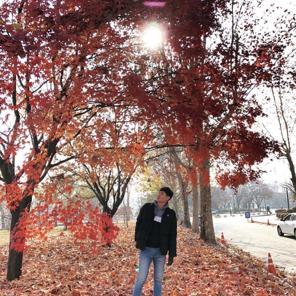 Check-in 3 địa điểm đẹp như phim trong mùa thu Hàn Quốc-7