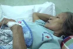 9 người nhập viện cấp cứu vì ong vò vẽ đốt