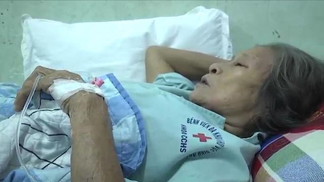 9 người nhập viện cấp cứu vì ong vò vẽ đốt-1