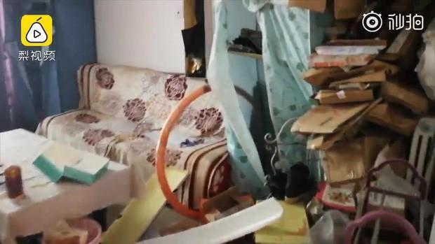 Đi ở trọ, hotgirl triệu follower bị tố sống bẩn để phòng ngập ngụa rác lại có cả phân chó-2