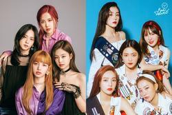 Knet chỉ thẳng điểm yếu chí mạng của các nhóm nữ đình đám Kpop chuẩn đến mức fan muốn cãi cũng phải 'khâu miệng'