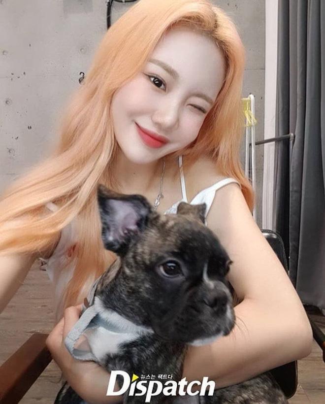 Nữ idol xấu nhất lịch sử Kpop khoe ảnh xinh hút hồn, Knet lập tức bóc mẽ: App sống ảo nào xịn thế?-4
