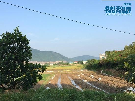 Đột nhập trang trại 300 tỷ của sư thầy Thích Thanh Toàn dưới chân núi Tam Đảo-4