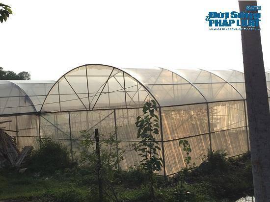 Đột nhập trang trại 300 tỷ của sư thầy Thích Thanh Toàn dưới chân núi Tam Đảo-9