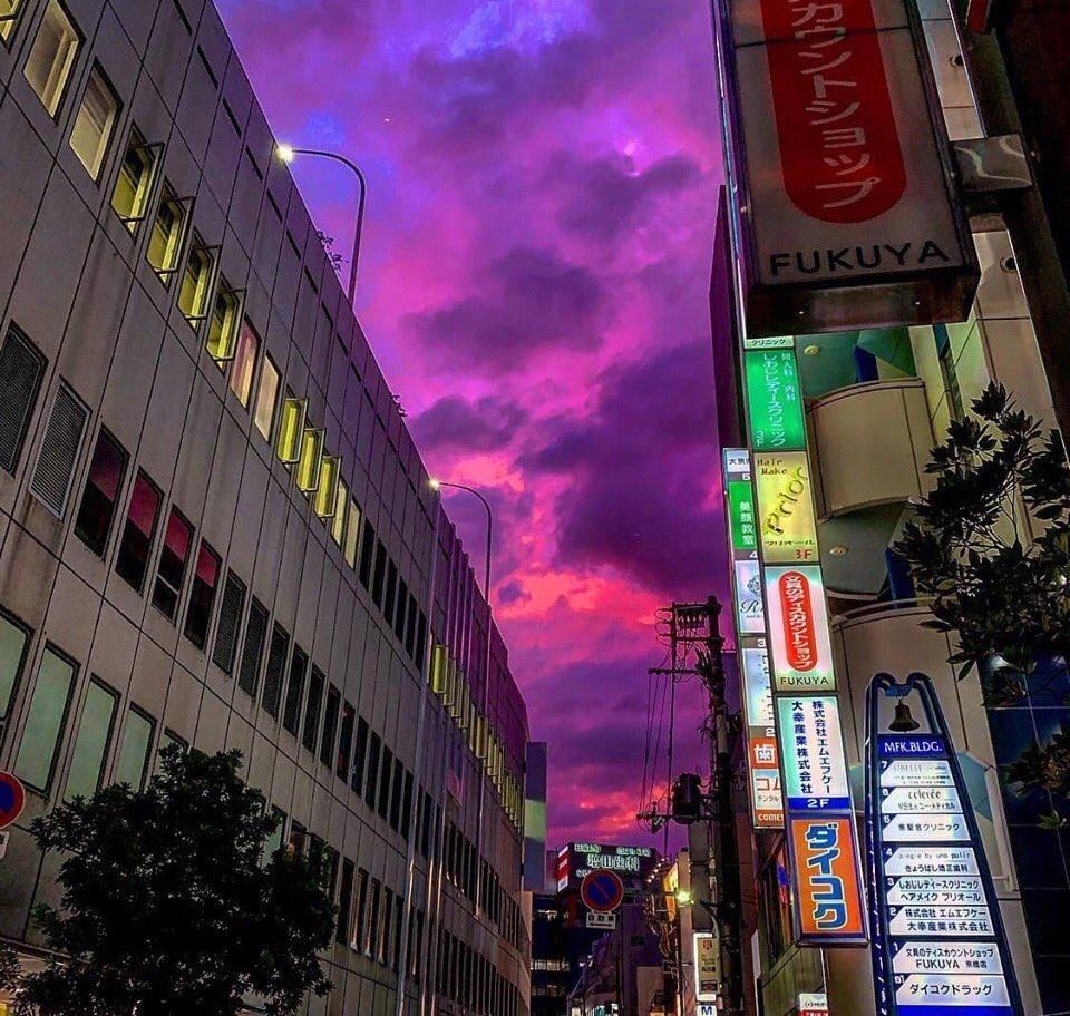 Bầu trời Nhật Bản tím lịm kỳ dị khi siêu bão Hagibis sắp đổ bộ-6