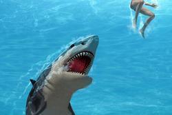 Cá mập trắng tấn công nhóm thợ lặn