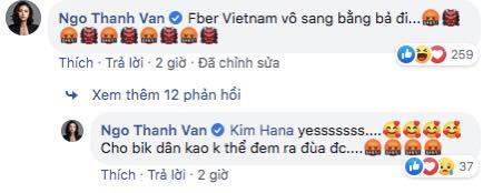 Ngô Thanh Vân kêu gọi cư dân mạng đánh sập page nữ ca sĩ Mỹ mặc áo dài không quần phản cảm-6