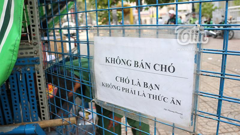 Người cha già nhặt nhạnh từng chiếc ve chai, cưu mang đàn con tật nguyền giữa Sài Gòn hoa lệ-2
