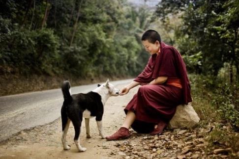 Phật dạy trên đời con người nếu cho đi 3 thứ đơn giản này, sẽ trọn vẹn công đức-2