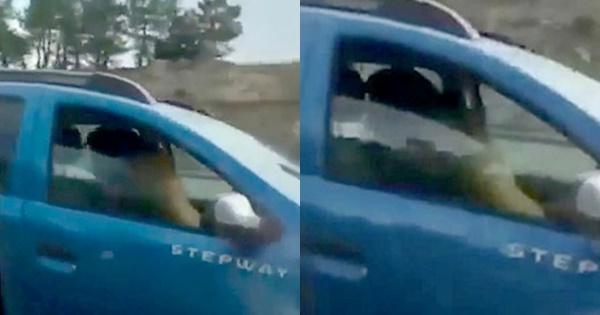 Cặp đôi mạo hiểm mây mưa trong lúc lái xe để tìm cảm giác lạ-1