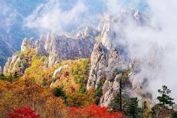 Mùa lá chuyển màu đẹp tựa tiên cảnh ở vùng núi Hàn Quốc