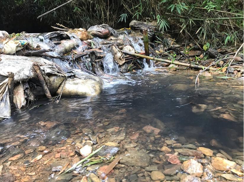 Kẻ chủ mưu đổ dầu thải vào đầu nguồn nước sông Đà ra đầu thú-1
